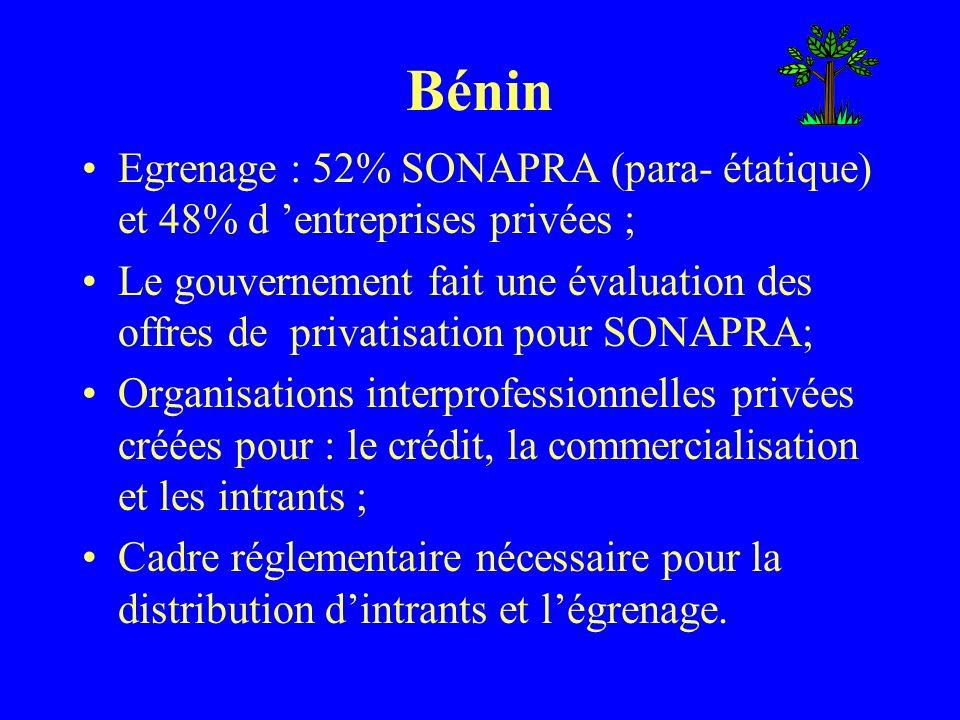 Burkina Faso Egrenage : SOFITEX (1/3 producteurs, 1/3 état and 1/3 Dagris) désinvestit dans deux zones de production, mais garde 75% des capacités ; Appels d offre gagnés par Rheinhardt et Dagris; UNPCB a la chance de participer – 30 % w/ Dagris et 10% w/ Rheinhardt; Organisation interprofessionnelle pour les prix, les intrants ou le développement du secteur