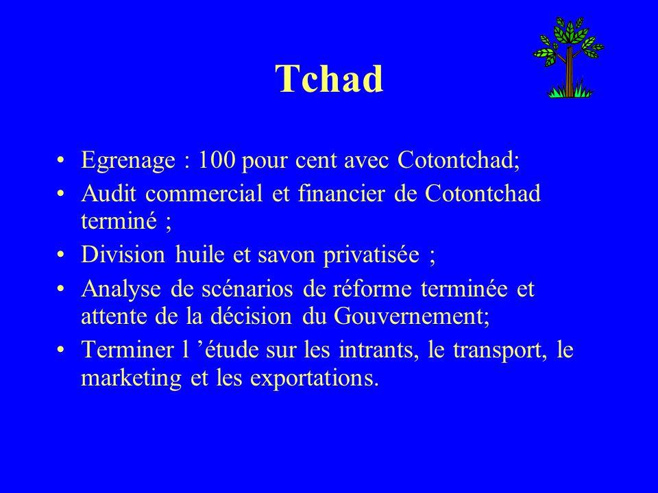 Tchad Egrenage : 100 pour cent avec Cotontchad; Audit commercial et financier de Cotontchad terminé ; Division huile et savon privatisée ; Analyse de