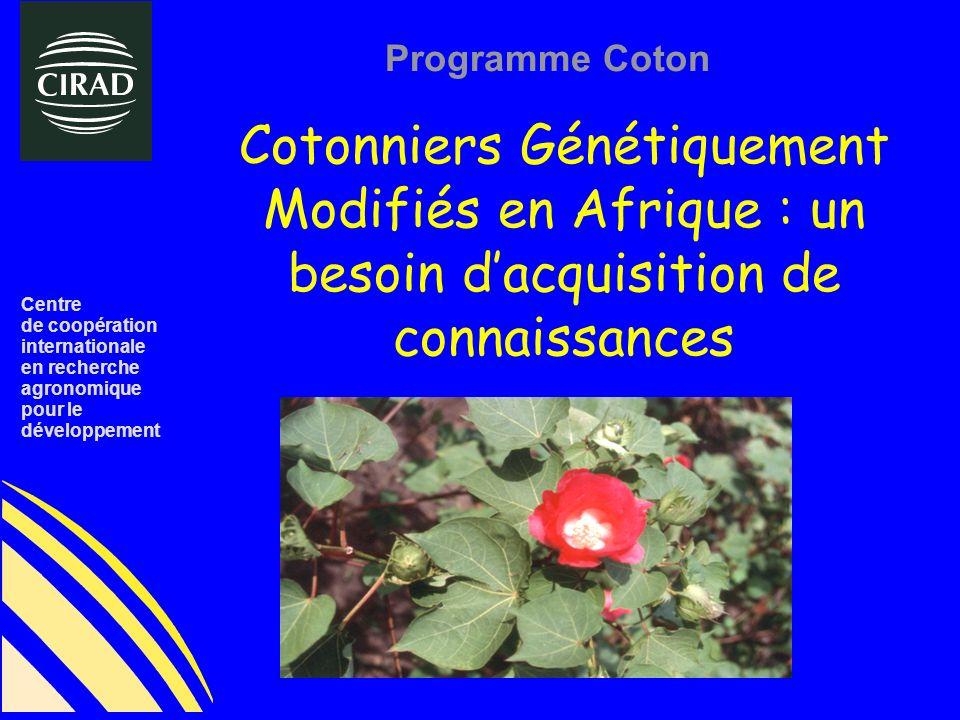Cotonniers Génétiquement Modifiés en Afrique : un besoin dacquisition de connaissances Centre de coopération internationale en recherche agronomique pour le développement Programme Coton