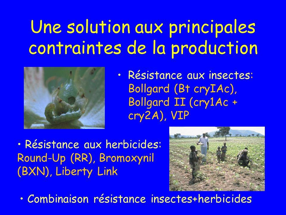 Une solution aux principales contraintes de la production Résistance aux insectes: Bollgard (Bt cryIAc), Bollgard II (cry1Ac + cry2A), VIP Résistance aux herbicides: Round-Up (RR), Bromoxynil (BXN), Liberty Link Combinaison résistance insectes+herbicides