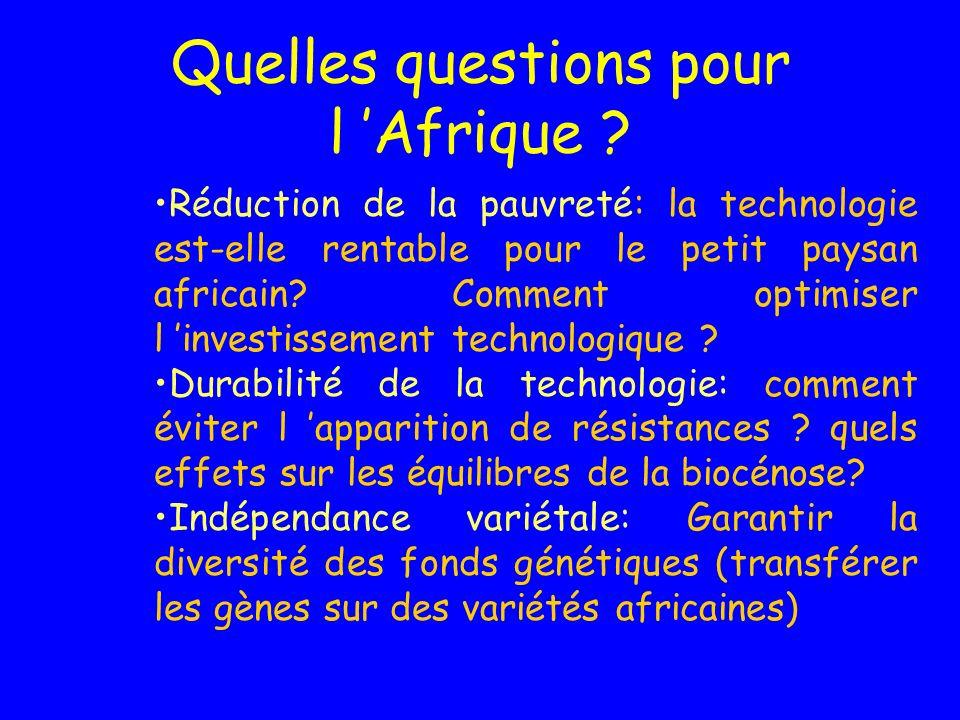 Quelles questions pour l Afrique .