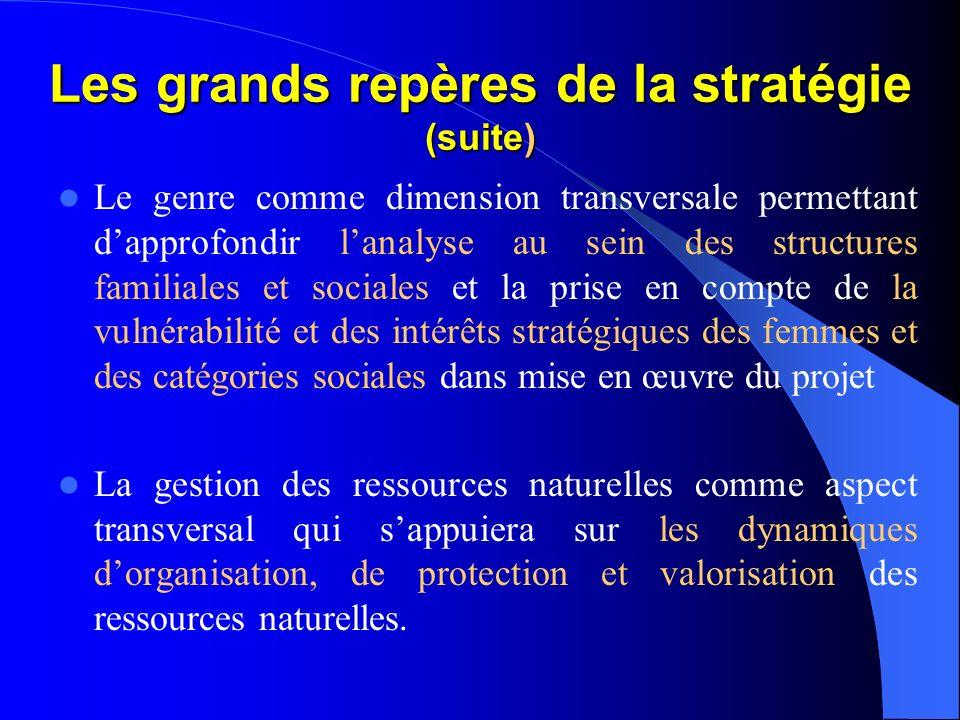 Les grands repères de la stratégie (suite) Lappui à lélaboration et à la mise en œuvre des plans daction villageois, inter-villageois et communaux ren