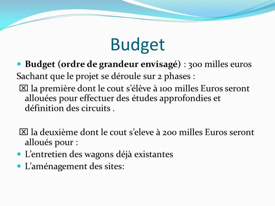 Budget Budget (ordre de grandeur envisagé) : 300 milles euros Sachant que le projet se déroule sur 2 phases : la première dont le cout sélève à 100 mi