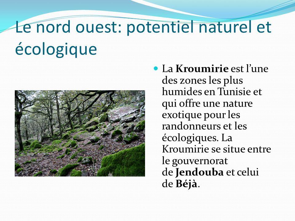 Le nord ouest: potentiel naturel et écologique La Kroumirie est lune des zones les plus humides en Tunisie et qui offre une nature exotique pour les r