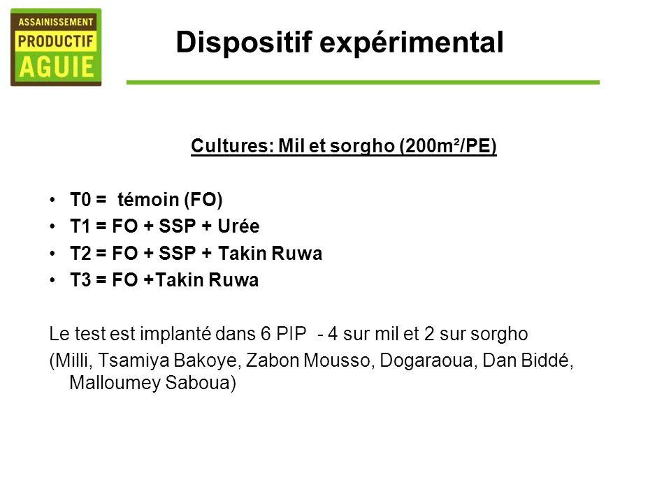 Dispositif expérimental Cultures: Mil et sorgho (200m²/PE) T0 = témoin (FO) T1 = FO + SSP + Urée T2 = FO + SSP + Takin Ruwa T3 = FO +Takin Ruwa Le tes