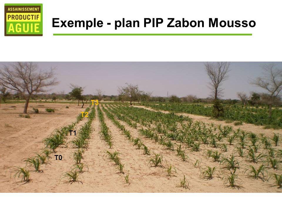 Exemple - plan PIP Zabon Mousso T2 T0 T1 T3