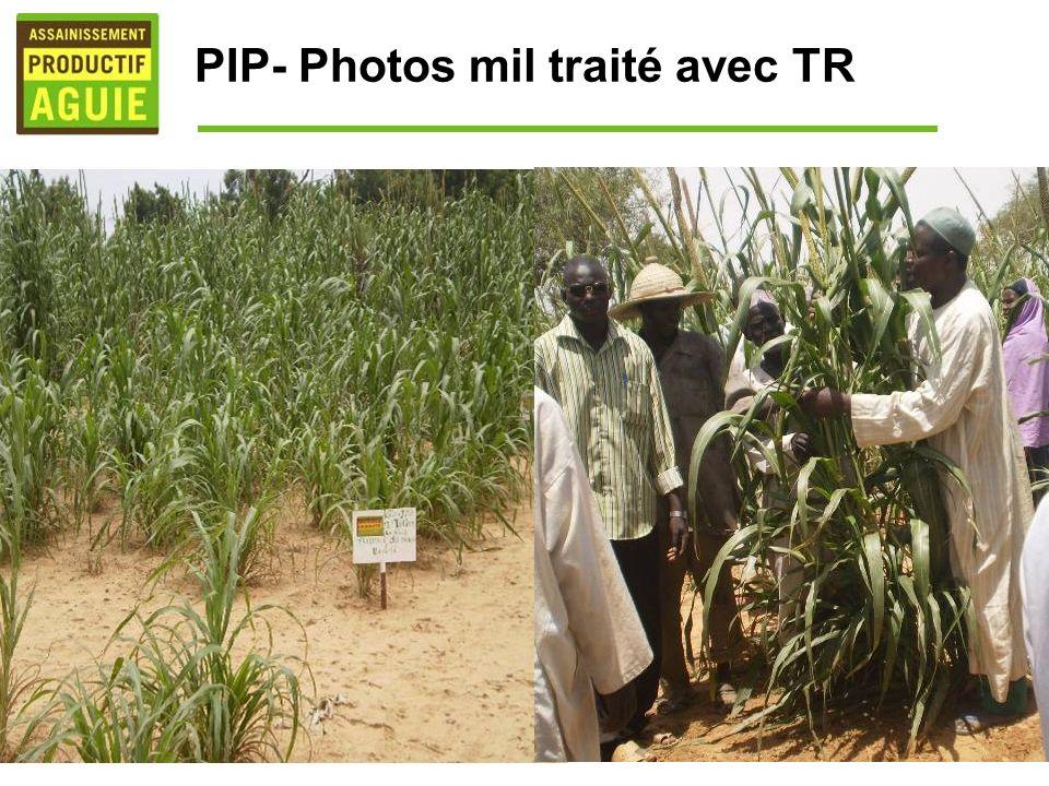 PIP- Photos mil traité avec TR