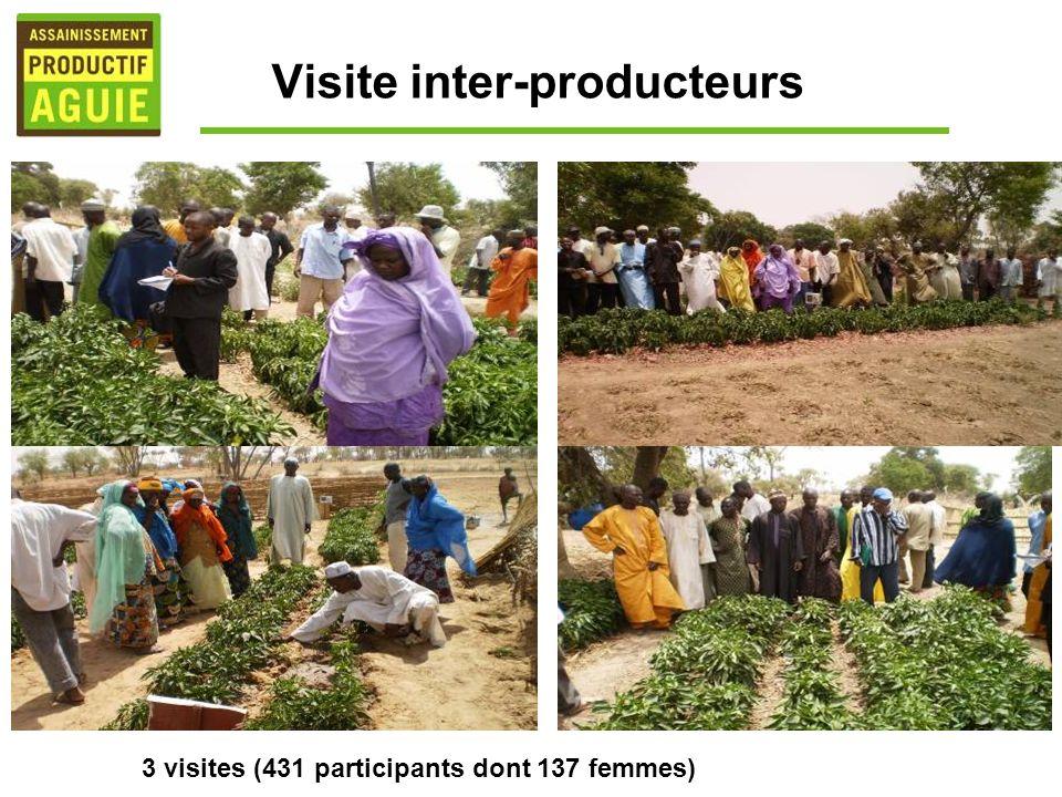 Visite inter-producteurs 3 visites (431 participants dont 137 femmes)