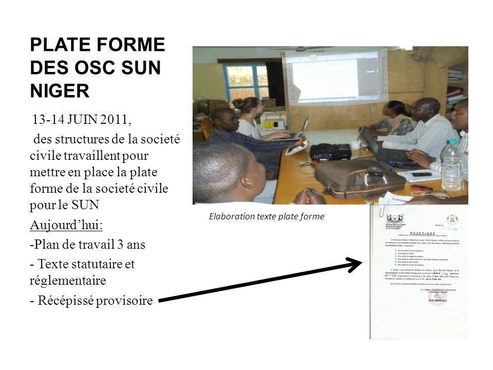 PLATE FORME DES OSC SUN NIGER 13-14 JUIN 2011, des structures de la societé civile travaillent pour mettre en place la plate forme de la societé civil