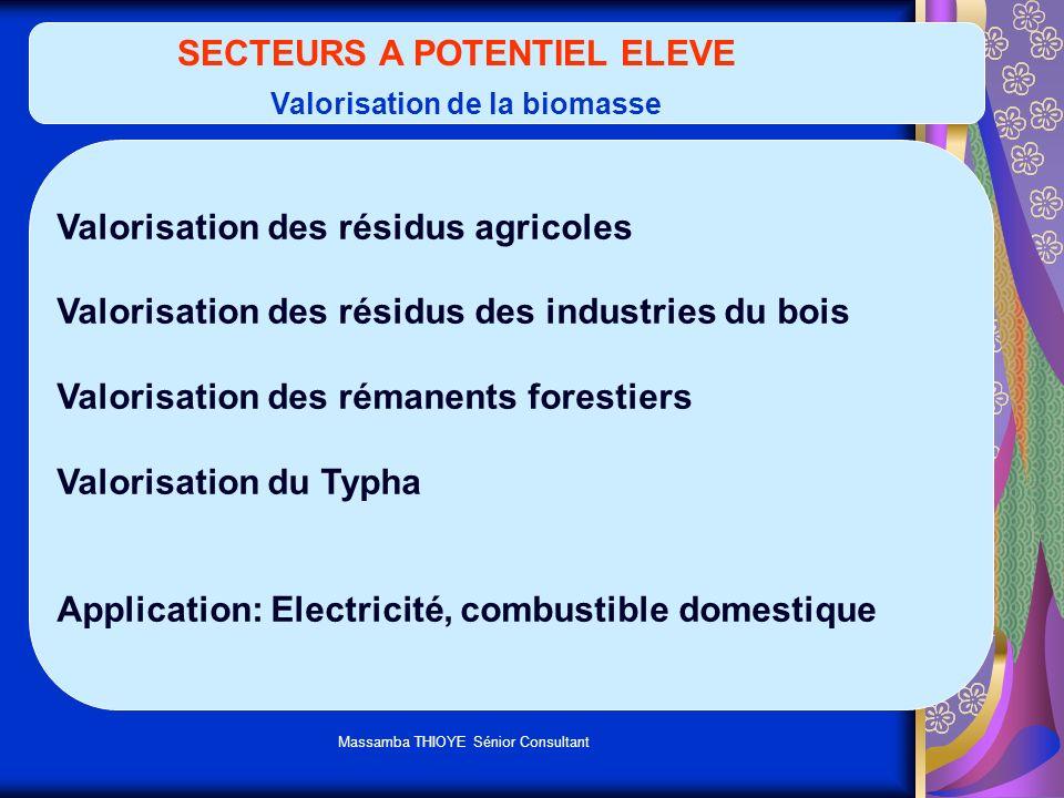 Massamba THIOYE Sénior Consultant SECTEURS A POTENTIEL ELEVE Valorisation de la biomasse Valorisation des résidus agricoles Valorisation des résidus d