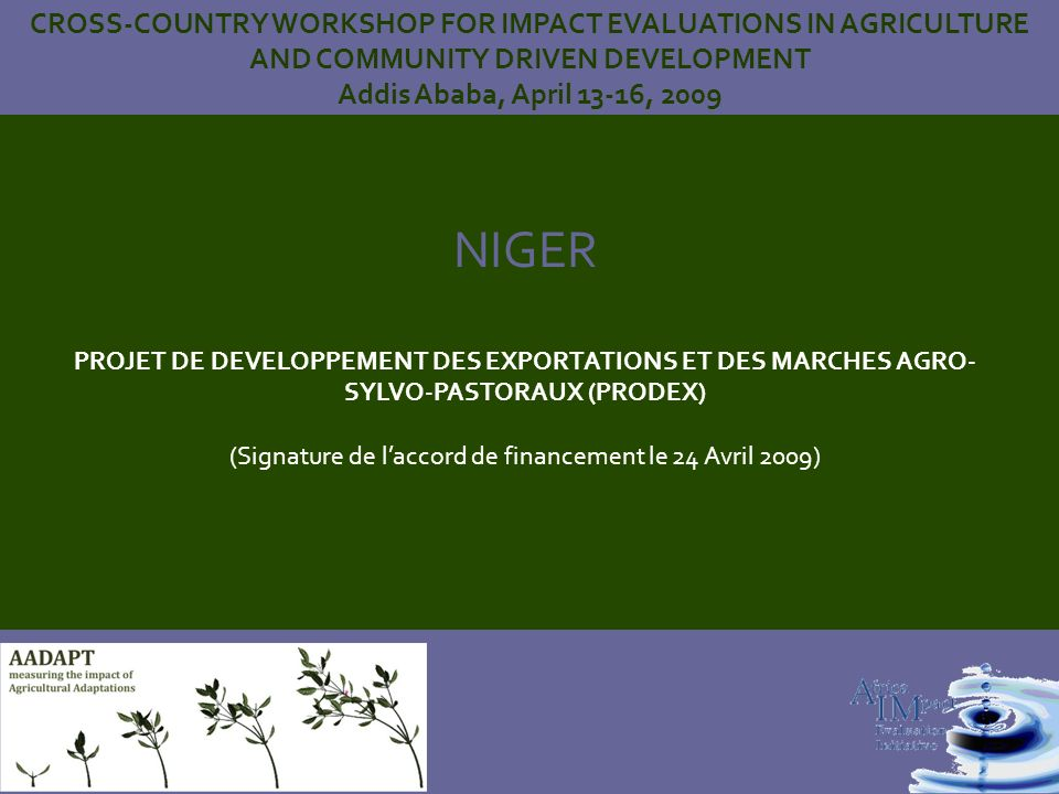 NIGER PROJET DE DEVELOPPEMENT DES EXPORTATIONS ET DES MARCHES AGRO- SYLVO-PASTORAUX (PRODEX) (Signature de laccord de financement le 24 Avril 2009) CROSS-COUNTRY WORKSHOP FOR IMPACT EVALUATIONS IN AGRICULTURE AND COMMUNITY DRIVEN DEVELOPMENT Addis Ababa, April 13-16, 2009