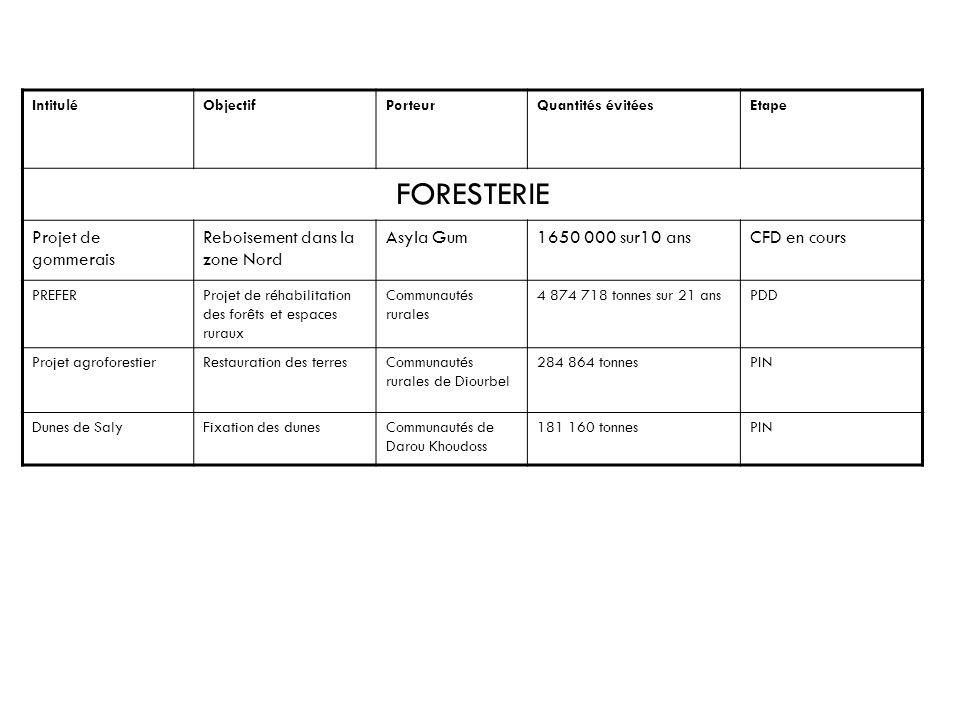 IntituléObjectifPorteurQuantités évitéesEtape FORESTERIE Projet de gommerais Reboisement dans la zone Nord Asyla Gum1650 000 sur10 ansCFD en cours PRE