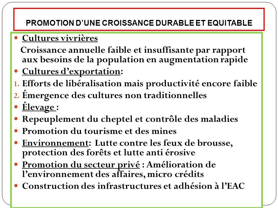 PROMOTION DUNE CROISSANCE DURABLE ET EQUITABLE (suite) : Problèmes de lénergie