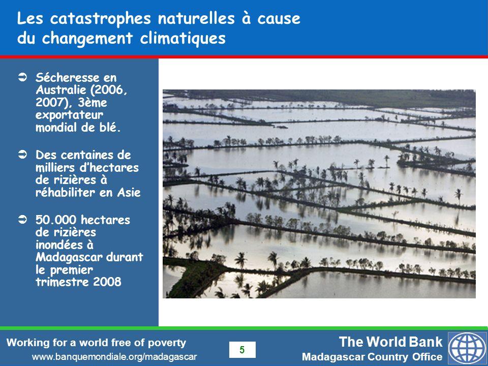 The World Bank Madagascar Country Office www.banquemondiale.org/madagascar Working for a world free of poverty 16 Evolution du prix du riz à Madagascar Forte corrélation entre le prix du riz local et le prix paritaire à limportation, sauf entre Mars et Juillet (periode de recolte) – baisse de 20 à 25% Cours mondiaux actuels ($800 - $900 /tonnes) indiquent un prix paritaire à limportation denviron 1,600 Ar /kg au détail à Tana.