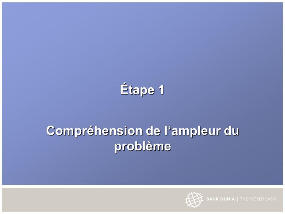 Système de Livraison Gestion de Programme – Ministère des affaires sociales (DEPSOS).