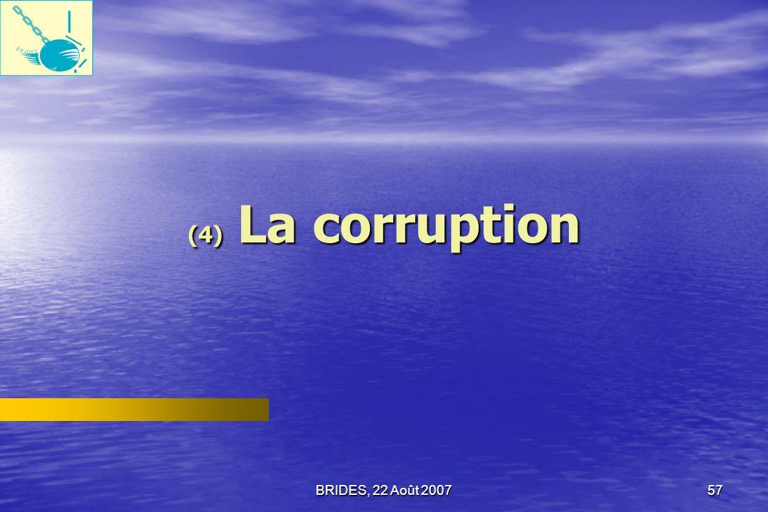 BRIDES, 22 Août 200756 Informations concernant les droits fondamentaux La politique dinformation de lÉtat est la seule source de préoccupation concernant les droits fondamentaux qui soit mentionnée par les répondants.