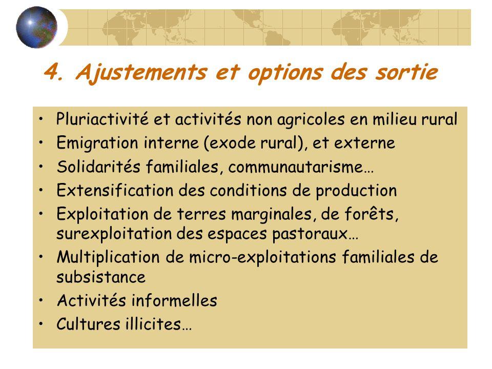 4. Ajustements et options des sortie Pluriactivité et activités non agricoles en milieu rural Emigration interne (exode rural), et externe Solidarités
