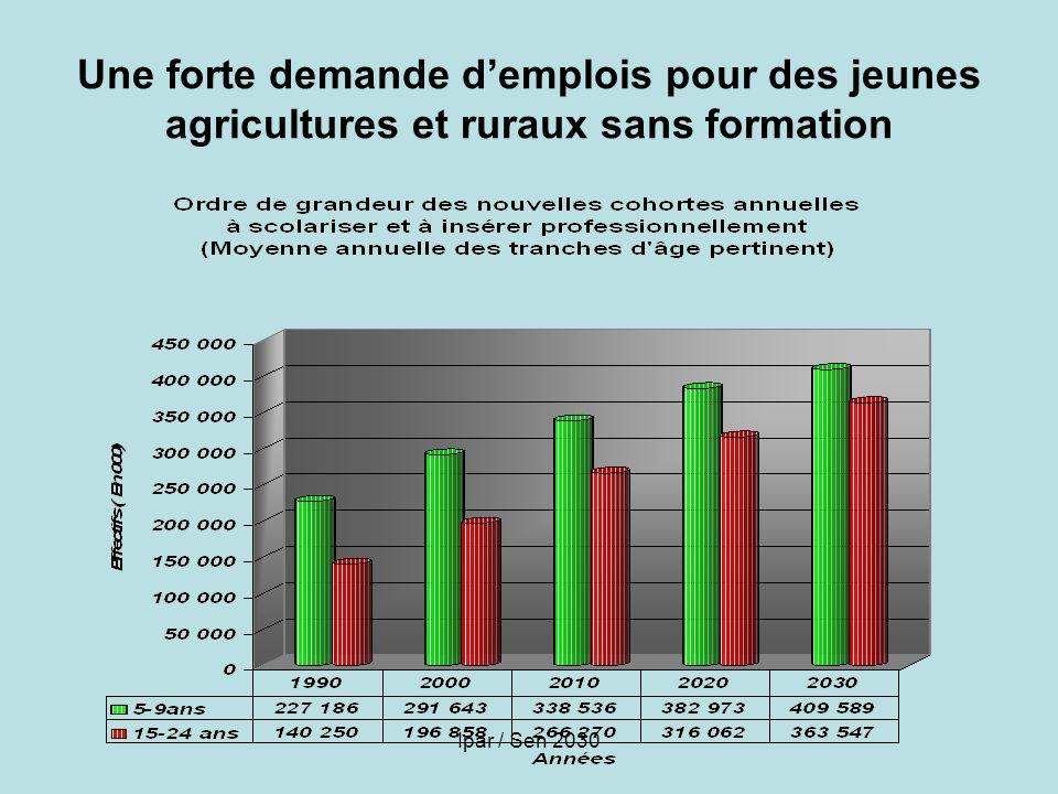Ipar / Sen 2030 Une forte demande demplois pour des jeunes agricultures et ruraux sans formation