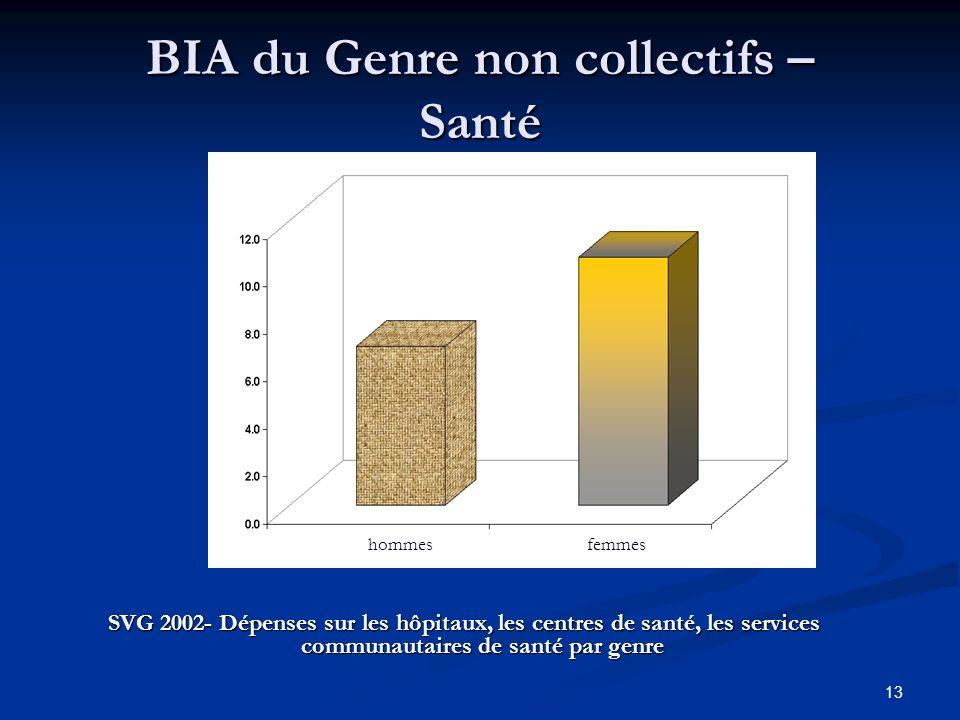 13 BIA du Genre non collectifs – Santé SVG 2002- Dépenses sur les hôpitaux, les centres de santé, les services communautaires de santé par genre hommesfemmes
