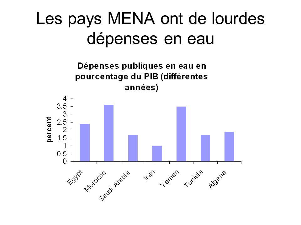 Les pays MENA ont de lourdes dépenses en eau