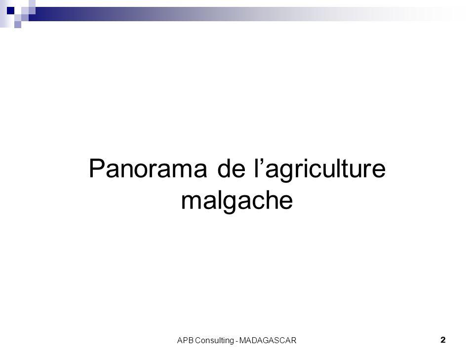 APB Consulting - MADAGASCAR2 Panorama de lagriculture malgache