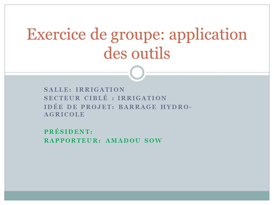 SALLE: IRRIGATION SECTEUR CIBLÉ : IRRIGATION IDÉE DE PROJET: BARRAGE HYDRO- AGRICOLE PRÉSIDENT: RAPPORTEUR: AMADOU SOW Exercice de groupe: application des outils