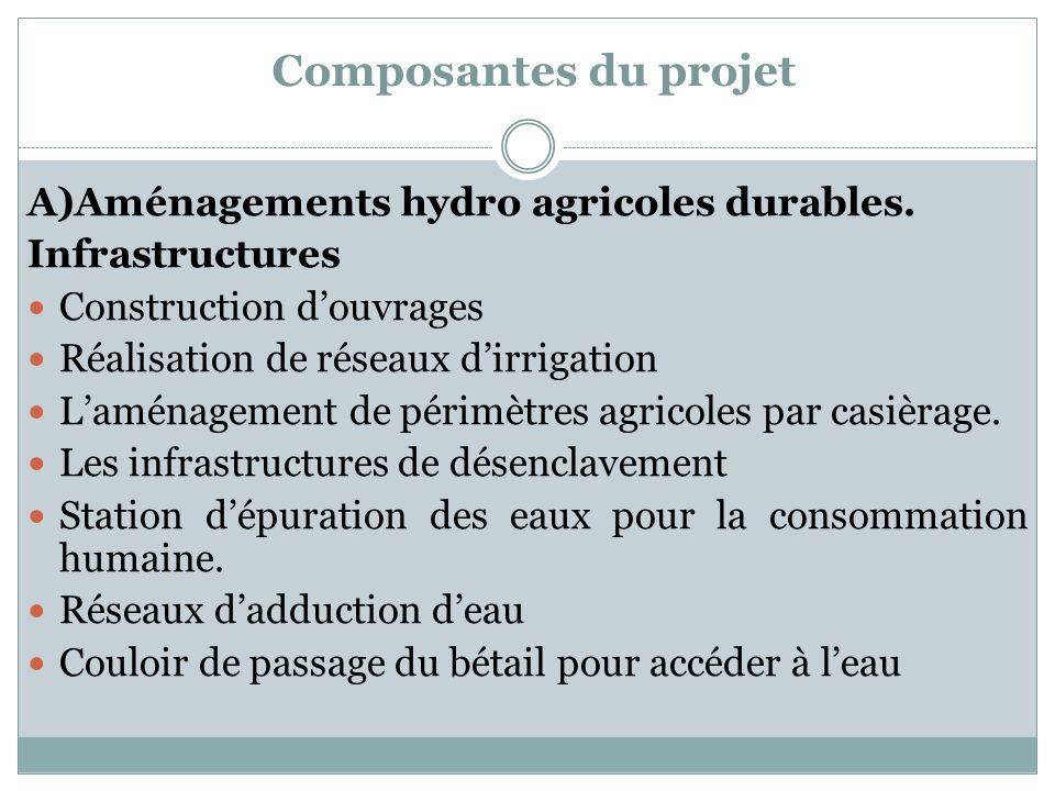 Composantes du projet A)Aménagements hydro agricoles durables. Infrastructures Construction douvrages Réalisation de réseaux dirrigation Laménagement