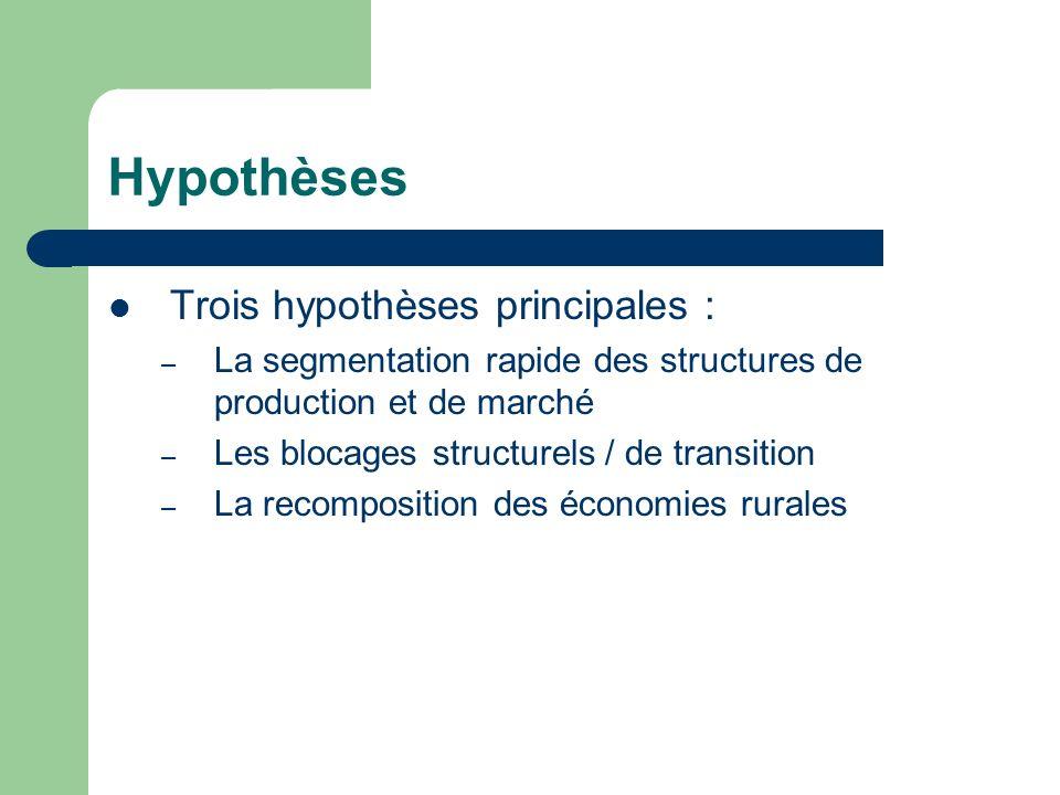 Hypothèses Trois hypothèses principales : – La segmentation rapide des structures de production et de marché – Les blocages structurels / de transition – La recomposition des économies rurales