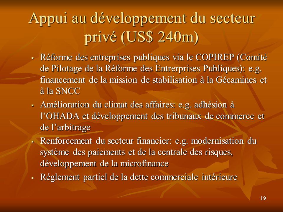19 Appui au développement du secteur privé (US$ 240m) Réforme des entreprises publiques via le COPIREP (Comité de Pilotage de la Réforme des Entrerpri
