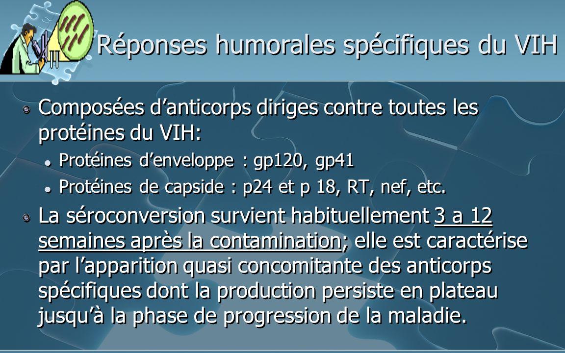 Réponses humorales spécifiques du VIH Composées danticorps diriges contre toutes les protéines du VIH: Protéines denveloppe : gp120, gp41 Protéines de capside : p24 et p 18, RT, nef, etc.