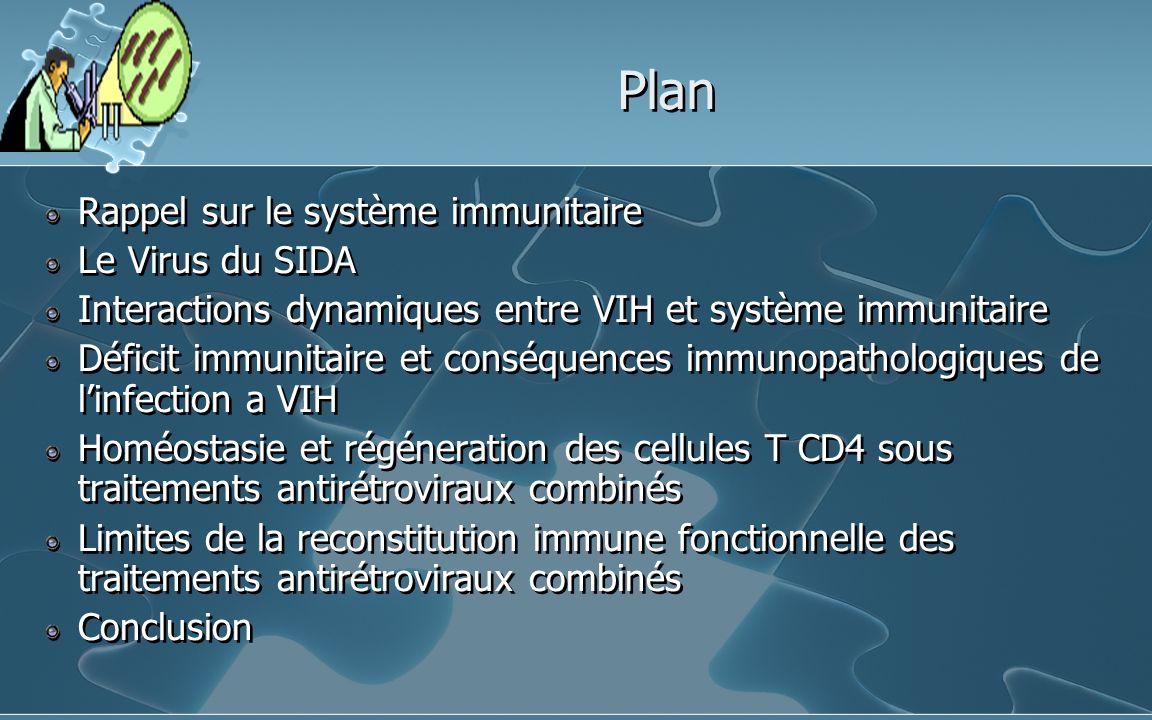 Plan Rappel sur le système immunitaire Le Virus du SIDA Interactions dynamiques entre VIH et système immunitaire Déficit immunitaire et conséquences i