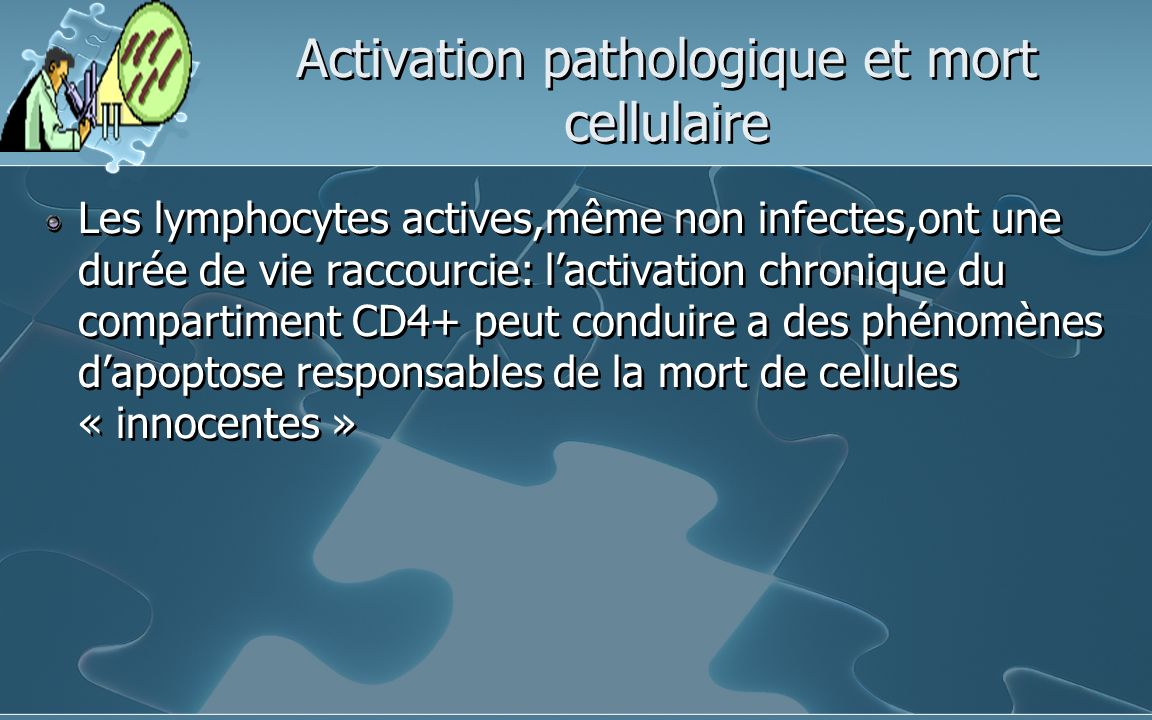 Activation pathologique et mort cellulaire Les lymphocytes actives,même non infectes,ont une durée de vie raccourcie: lactivation chronique du compartiment CD4+ peut conduire a des phénomènes dapoptose responsables de la mort de cellules « innocentes »