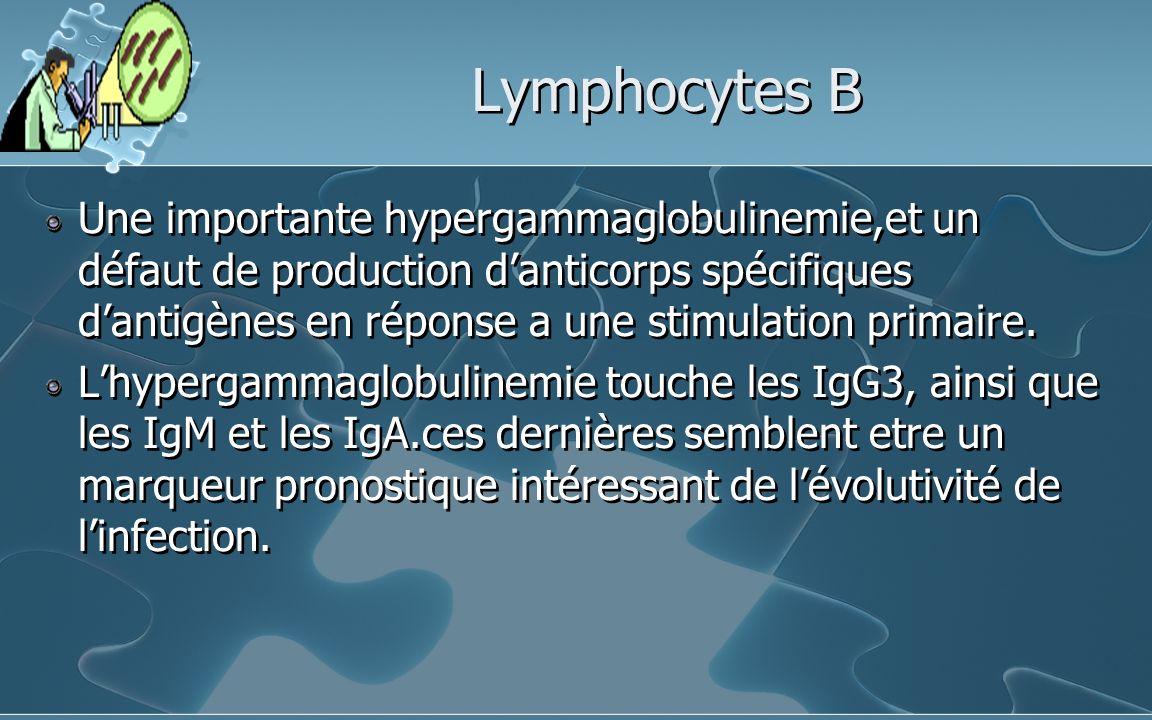 Lymphocytes B Une importante hypergammaglobulinemie,et un défaut de production danticorps spécifiques dantigènes en réponse a une stimulation primaire.