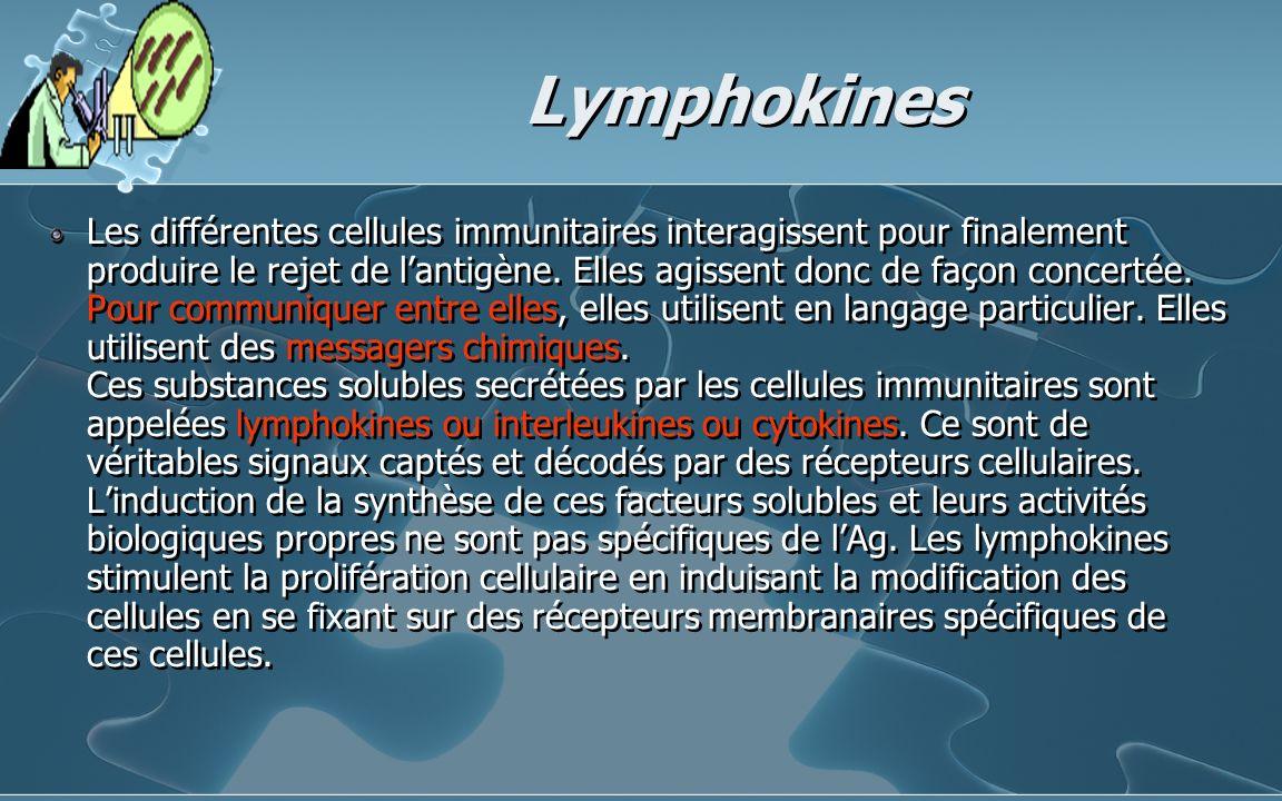 Lymphokines Les différentes cellules immunitaires interagissent pour finalement produire le rejet de lantigène. Elles agissent donc de façon concertée
