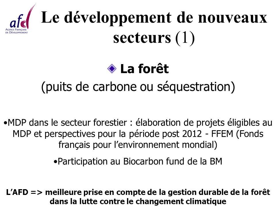 Le développement de nouveaux secteurs (1) La forêt (puits de carbone ou séquestration) MDP dans le secteur forestier : élaboration de projets éligibles au MDP et perspectives pour la période post 2012 - FFEM (Fonds français pour lenvironnement mondial) Participation au Biocarbon fund de la BM LAFD => meilleure prise en compte de la gestion durable de la forêt dans la lutte contre le changement climatique