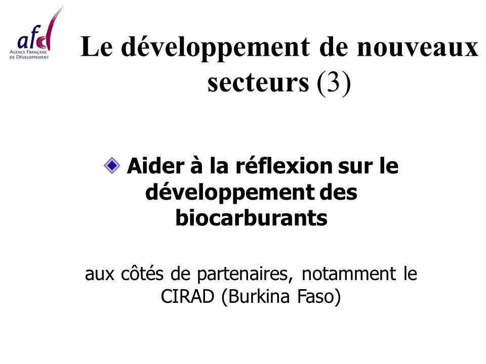 Le développement de nouveaux secteurs (3) Aider à la réflexion sur le développement des biocarburants aux côtés de partenaires, notamment le CIRAD (Burkina Faso)