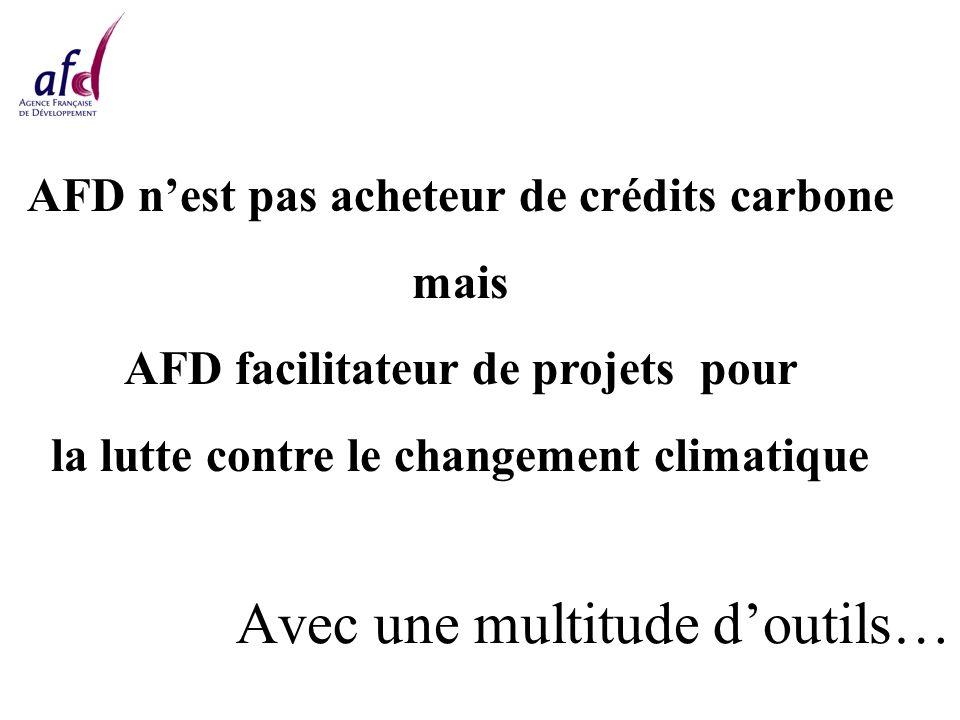 Avec une multitude doutils… AFD nest pas acheteur de crédits carbone mais AFD facilitateur de projets pour la lutte contre le changement climatique