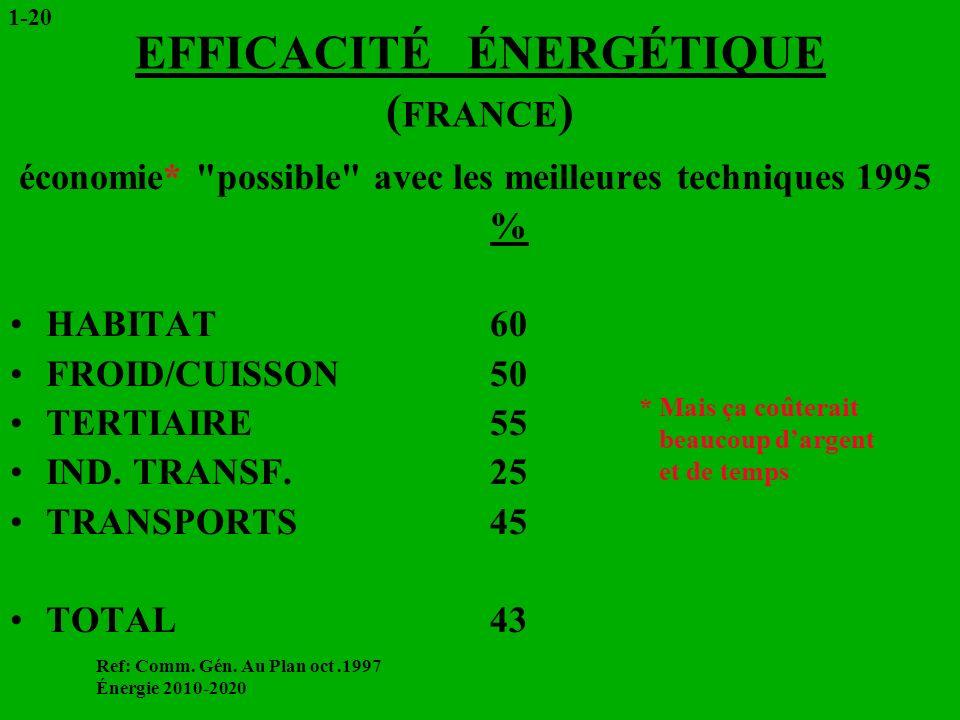 EFFICACITÉ ÉNERGÉTIQUE ( FRANCE ) économie*
