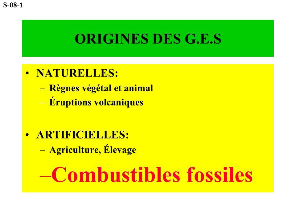 ORIGINES DES G.E.S NATURELLES: –R–Règnes végétal et animal –É–Éruptions volcaniques ARTIFICIELLES: –A–Agriculture, Élevage –C–Combustibles fossiles S-