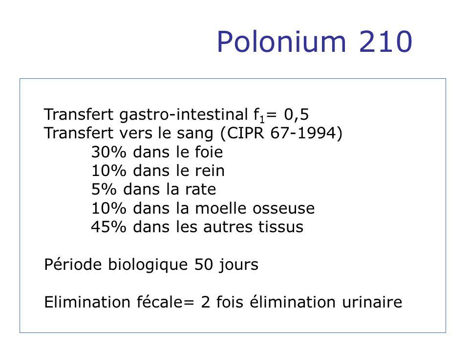 Polonium 210 Transfert gastro-intestinal f 1 = 0,5 Transfert vers le sang (CIPR 67-1994) 30% dans le foie 10% dans le rein 5% dans la rate 10% dans la