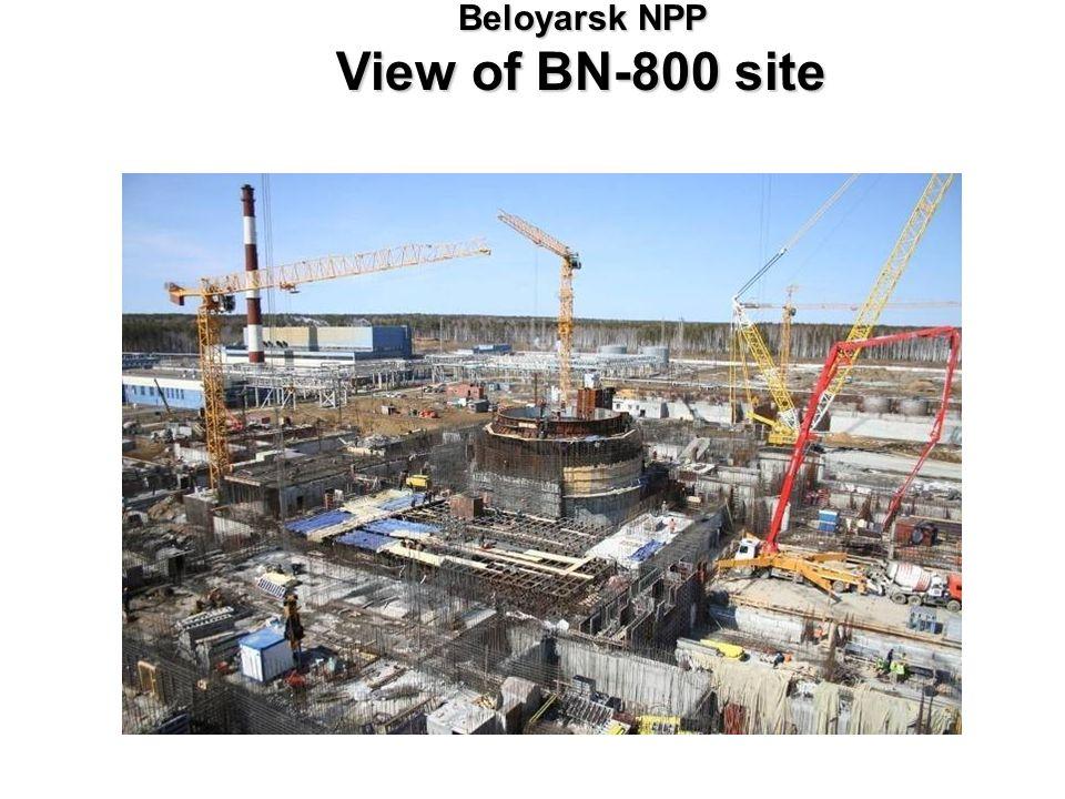 Beloyarsk NPP View of BN-800 site