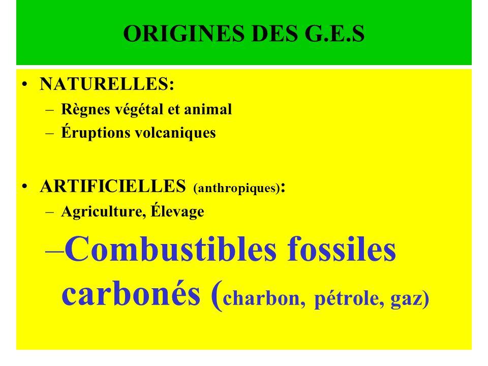 ORIGINES DES G.E.S NATURELLES: –R–Règnes végétal et animal –É–Éruptions volcaniques ARTIFICIELLES (anthropiques) : –A–Agriculture, Élevage –C–Combusti