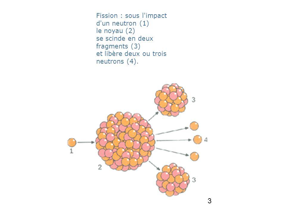 3 Fission : sous l'impact d'un neutron (1) le noyau (2) se scinde en deux fragments (3) et libère deux ou trois neutrons (4).