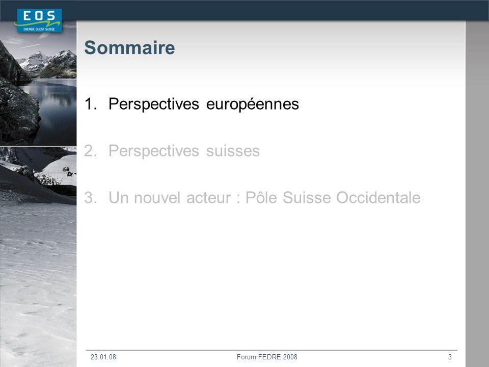 23.01.08Forum FEDRE 20083 Sommaire 1.Perspectives européennes 2.Perspectives suisses 3.Un nouvel acteur : Pôle Suisse Occidentale