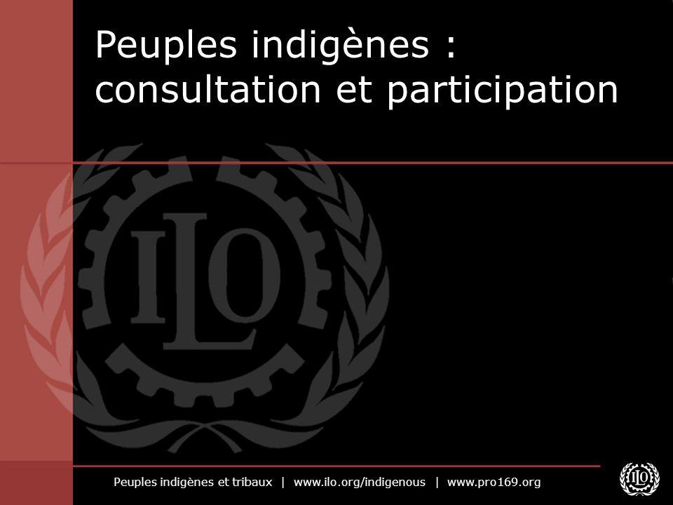 Peuples indigènes et tribaux | www.ilo.org/indigenous | www.pro169.org Enseignements tirés de l expérience de l OIT (2) Les mécanismes de consultation devraient, lorsque cela est possible, utiliser les structures existantes afin d en assurer la longévité, la viabilité et la légitimité.