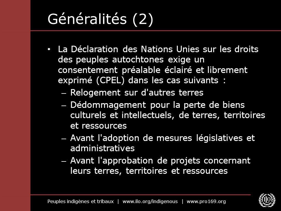 Peuples indigènes et tribaux | www.ilo.org/indigenous | www.pro169.org Généralités (2) La Déclaration des Nations Unies sur les droits des peuples aut