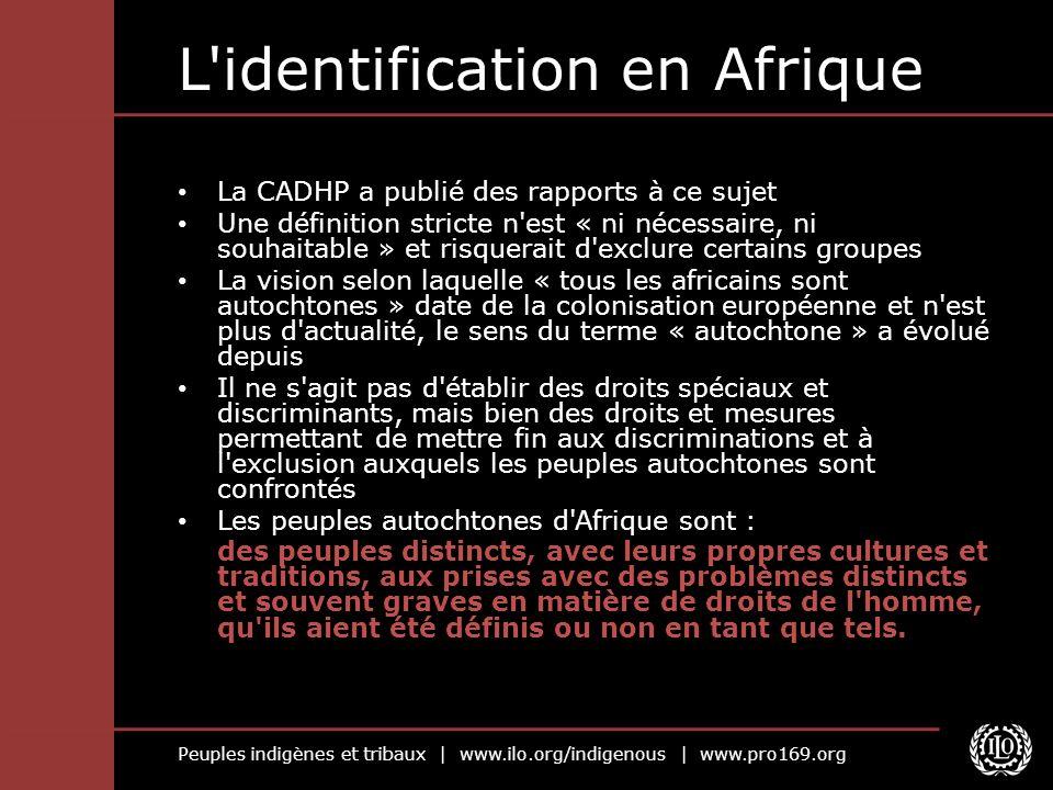 Peuples indigènes et tribaux | www.ilo.org/indigenous | www.pro169.org L identification en Afrique La CADHP a publié des rapports à ce sujet Une définition stricte n est « ni nécessaire, ni souhaitable » et risquerait d exclure certains groupes La vision selon laquelle « tous les africains sont autochtones » date de la colonisation européenne et n est plus d actualité, le sens du terme « autochtone » a évolué depuis Il ne s agit pas d établir des droits spéciaux et discriminants, mais bien des droits et mesures permettant de mettre fin aux discriminations et à l exclusion auxquels les peuples autochtones sont confrontés Les peuples autochtones d Afrique sont : des peuples distincts, avec leurs propres cultures et traditions, aux prises avec des problèmes distincts et souvent graves en matière de droits de l homme, qu ils aient été définis ou non en tant que tels.