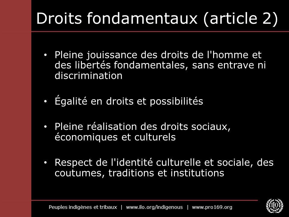 Peuples indigènes et tribaux | www.ilo.org/indigenous | www.pro169.org Droits fondamentaux (article 2) Pleine jouissance des droits de l'homme et des