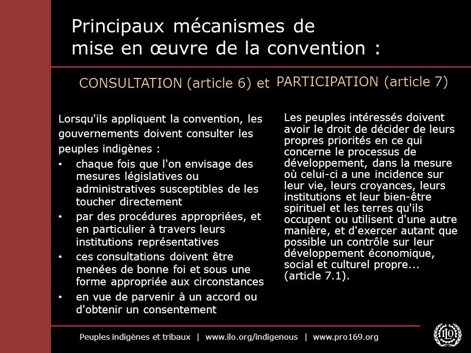 Peuples indigènes et tribaux | www.ilo.org/indigenous | www.pro169.org Principaux mécanismes de mise en œuvre de la convention : CONSULTATION (article
