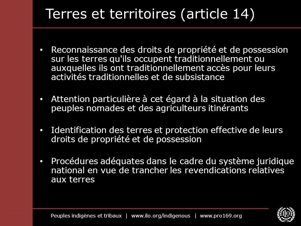 Peuples indigènes et tribaux | www.ilo.org/indigenous | www.pro169.org Terres et territoires (article 14) Reconnaissance des droits de propriété et de